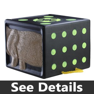 Rinehart RhinoBlock Target Review