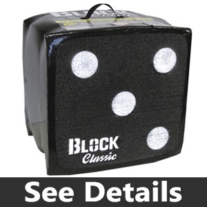 The Block Classic Archery Target review