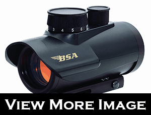 BSA 30mm Red Dot Scope with 5 MOA Review