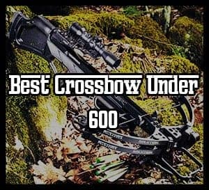 Best Crossbow Under 600